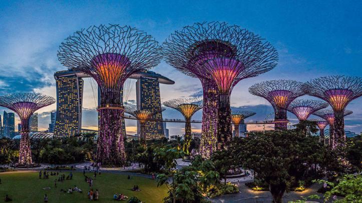 size_960_16_9_supertrees-singapura
