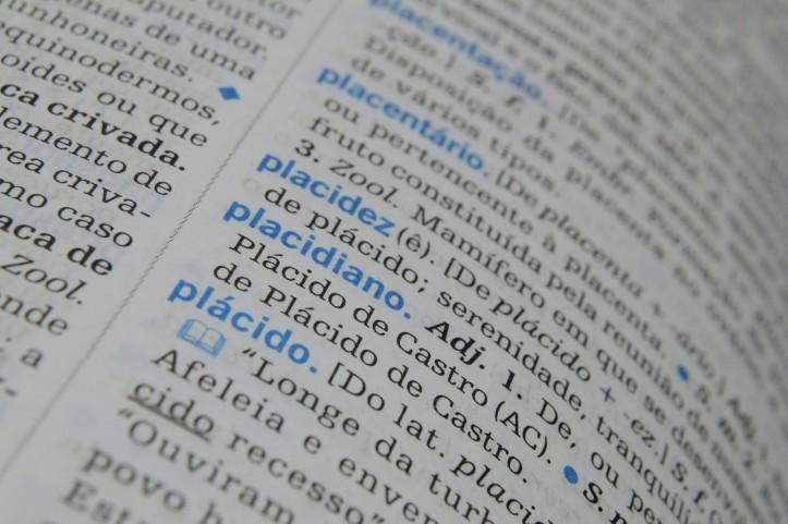 04062012dicionarioportugues_fotomarcossantos039