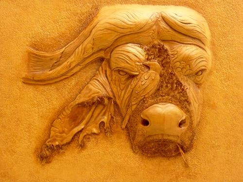 cape-buffalo-500x375px