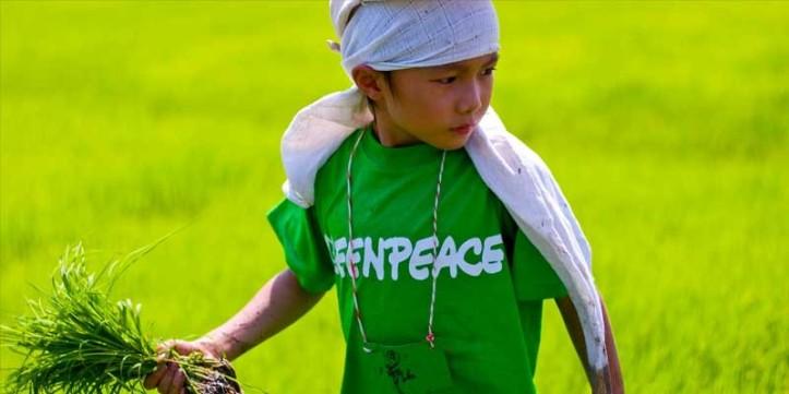 greenpeace-agriculture-kid.jpg